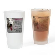 The Dog Lives Here. You Don't. Drinking Glass
