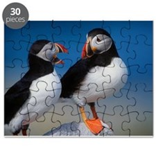 Puffin Birds Puzzle