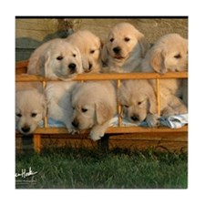 Cute Golden retriever Tile Coaster