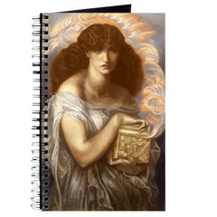 Pandora's Box Journal