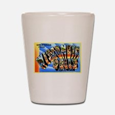 Wisconsin Dells Greetings Shot Glass
