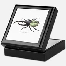Scarab Hercules Beetle Keepsake Box