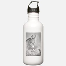 Baby Jesus/Donkey~Water Bottle