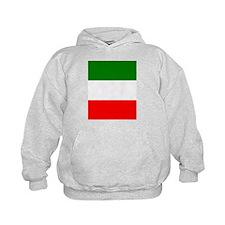 Unique Italy flag Hoodie