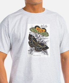 Colorful Moth Insects (Front) Ash Grey T-Shirt