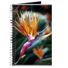 Bird of Paradise Journal