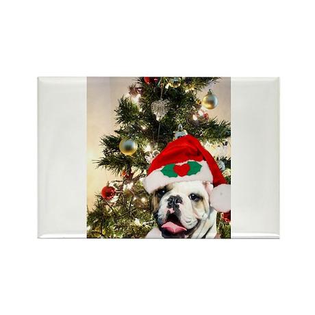 Christmas bulldog Rectangle Magnet (10 pack)