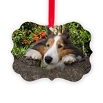 Squishy Face Picture Ornament
