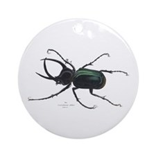 Scarab Atlas Beetle Ornament (Round)