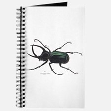 Scarab Atlas Beetle Journal