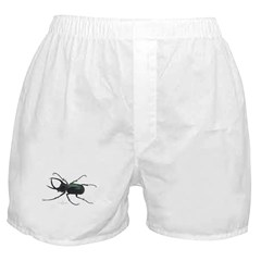 Scarab Atlas Beetle Boxer Shorts