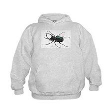 Scarab Atlas Beetle Hoody