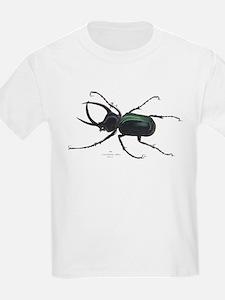 Scarab Atlas Beetle (Front) Kids T-Shirt