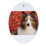 Autumn Leaves Ornament (Oval)