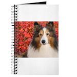 Autumn Leaves Journal