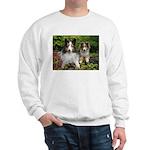 IMG_3115 copy.jpg Sweatshirt
