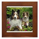IMG_3115 copy.jpg Framed Tile