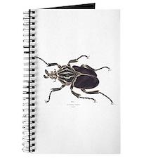 Goliath Beetle Journal