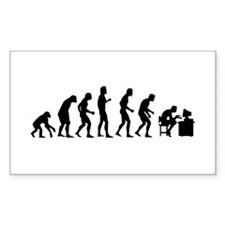 Evolution Decal