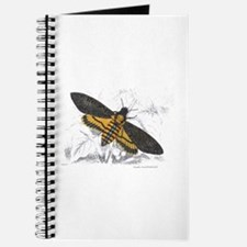 Deaths-head Hawkmoth Moth Journal