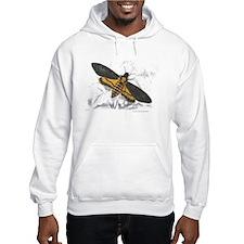 Deaths-head Hawkmoth Moth Hoodie
