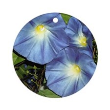 Morning Glorys Ornament (Round)