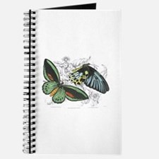 Butterfly Insects Journal