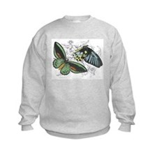 Butterfly Insects (Front) Sweatshirt
