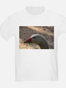 American Buff goose T-Shirt