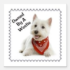 "Owned By A Westie 123 Square Car Magnet 3"" x"