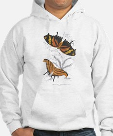 Butterfly Insects (Front) Hoodie