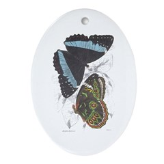 Butterfly Insects Oval Ornament