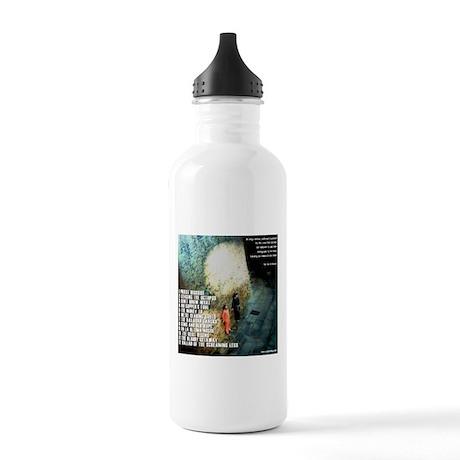 The Heist CD Back (TRACKS) Stainless Water Bottle