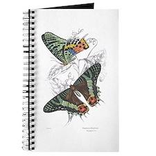 Madagascar Butterflies Journal