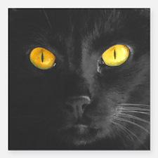 """Black Cats Rule Square Car Magnet 3"""" x 3&quot"""
