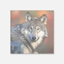 "Wolf Photograph Square Sticker 3"" x 3"""