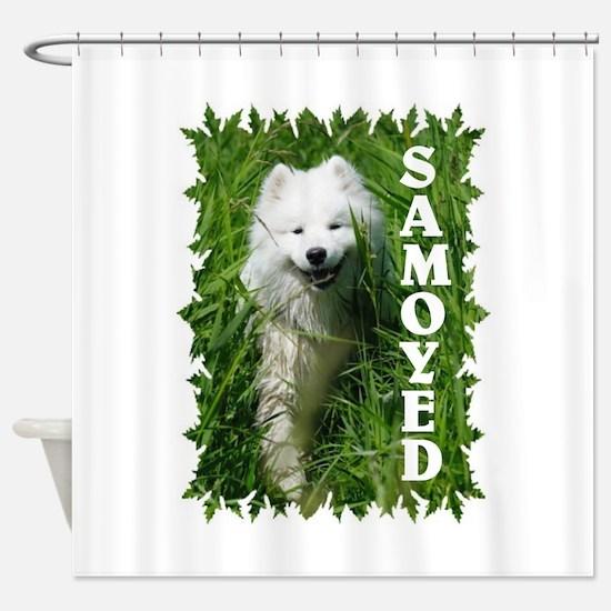 Samoyed In Grass Shower Curtain
