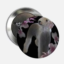 "A Friend 2.25"" Button"