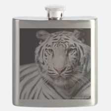 White Bengal Tiger Flask