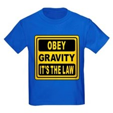 Obey Gravity. It's The Law! T