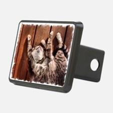 Lazy Summer Cat Hitch Cover