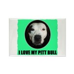 I LOVE MY PIT BULL Rectangle Magnet (100 pack)