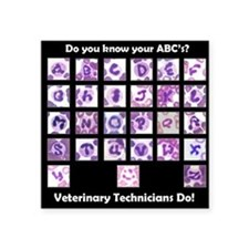 """Do You Know Your ABC's? Square Sticker 3"""" x 3"""""""