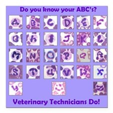 "Do you know your ABC's? Square Car Magnet 3"" x 3"""