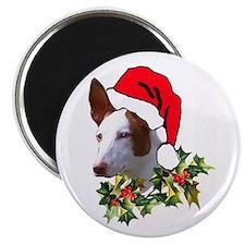 Ibizan Christmas Magnet