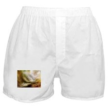 Turner Snowstorm and Avalanche Boxer Shorts