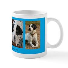 Custom Pet Memorial Mug