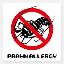 "Prawn Allergy Square Car Magnet 3"" x 3"""