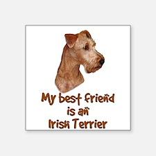 My best friend is an Irish Terrier Square Sticker