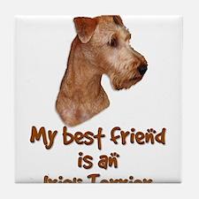 My best friend is an Irish Terrier Tile Coaster